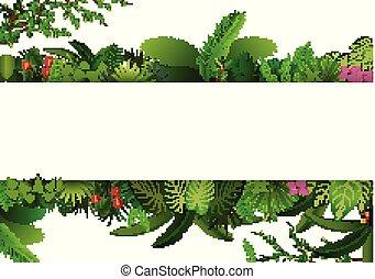 plante, espace, feuilles, text., exotique, arrière-plan., feuillage, horizontal, bannière, cadre, rectangle