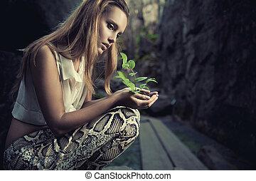plante, femelle, mains