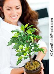 plante, femme affaires, incandescent, appareil photo, tenue, sourire