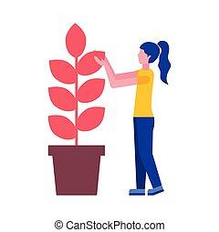 plante, femme, potted, jeune