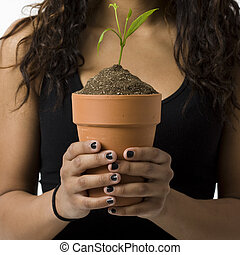 plante, girl, potted