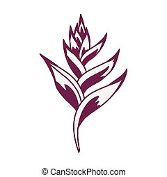 plante, icône, heliconia, exotique, exotique