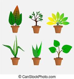 plante, .illustration, pot, arbre, vector., argile, petit