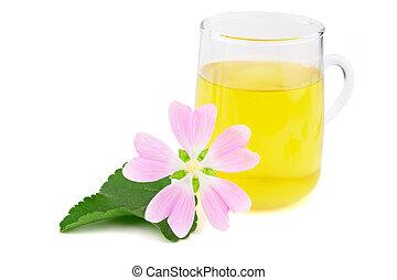 plante, marsh-mallow, officinalis, cup., arrière-plan., thé, isolé, verre, aussi, althaea, marais, commun, mauve, aromate, médicinal, blanc, extrait, ou, marshmallow.