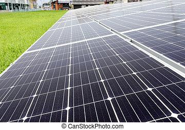 plante, panneaux, énergie solaire, puissance