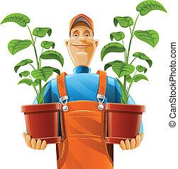 plante, pot fleurs, jardinier