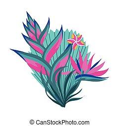 plante, pousse feuilles, heliconia, exotique, exotique