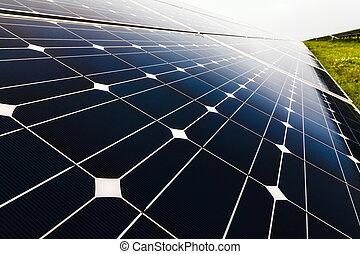 plante, puissance, énergie, solaire, utilisation, renouvelable