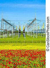 plante, station, distribution, puissance