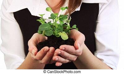plante, tenue femme, elle, main