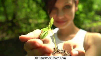 plante, tient, sol, poignée, peu, vert, girl, dehors