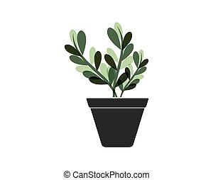 plante, vecteur, pot, illustration, gabarit