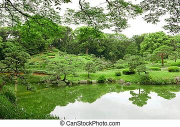 Pierre ext rieur jardin zen parc japonaise for Plante verte japonaise