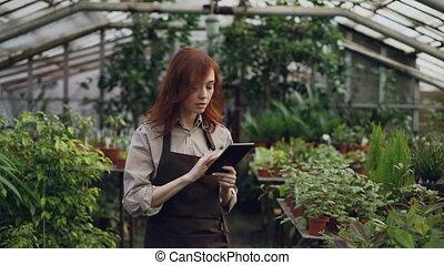 planten, informatie, vrouw, controleren, tablet., jonge,...