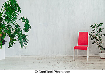 planten, kamer, ouderwetse , stoel, groen wit