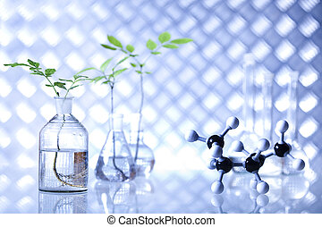 planten, wetenschapsexperiment