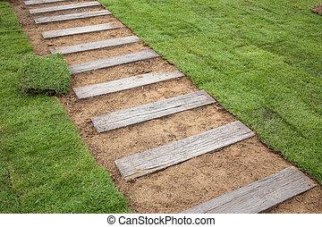 planter, gazon, herbe, nouveau, herbe, jardin