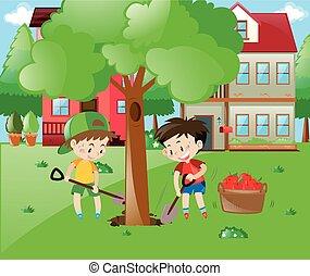 planter, jardin, grand arbre, deux garçons
