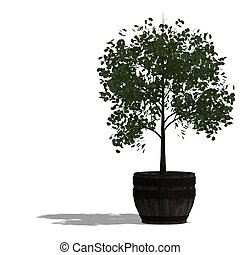 planter tree - rendering of a tree with shadow and lipping...