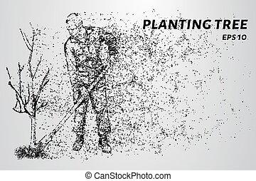 planter, vecteur, illustration., fonctionnement, particles., arbre., homme