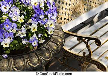 Planter with pansies and bench - Planter with purple viola...