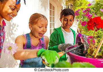 planterar, blomma, tagande, tre, omsorg, vänner, lycklig