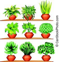 planterar, krukor, lera, slagen, olik