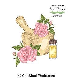planterar, set., te, medicinsk, leaves., illustration, hand, ro, vektor, ro, blomningen, drawn., oil., grundläggande