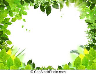 plantilla, marco, natural