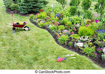 Planting a beautfiul colorful celosia flowerbed - High angle...