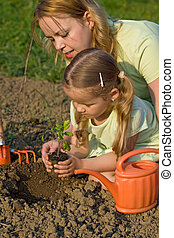 Woman and little girl planting a tomato seedling in the garden - slight motion blur
