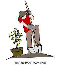 Planting a Tree - An image of a person planting a tree.