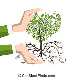 Planting a Tree with Roots. Plant in Human Hands Vector Illustration Isolated on White Bckground.