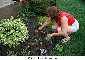 Planting Flowers - Woman planting flowers in garden