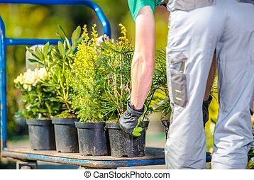 Planting Garden Trees