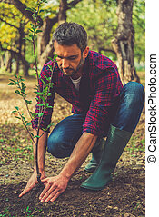 Planting new life. Confident young man planting a tree while working in the garden