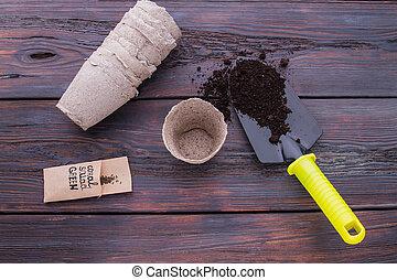 Planting oat seeds concept.