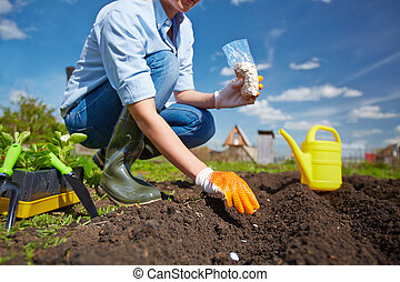 Planting - Agriculturist sowing plantation
