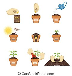 Planting The Seed Sequence Cartoon Simple Style Flat Vector...