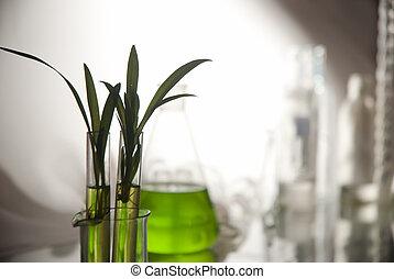 plantlet