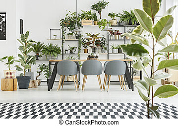 Plants against white wall