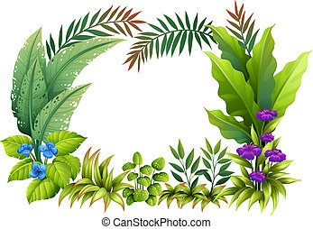 Plants and flowers - Illustration of plants and flowers on a...