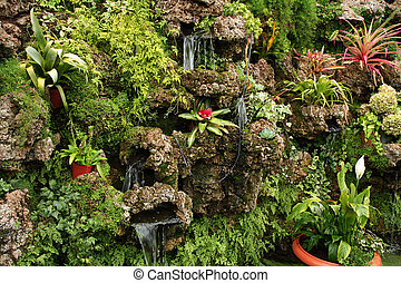 Plants - Different tropical plants on rocks in greenhouse
