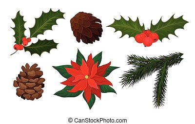 Plants for Christmas Holiday Decoration Collection, Poinsettia, Spruce Branch, Pine Cone, Holly Vector Illustration
