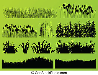 Plants, grass and flowers detailed silhouettes illustration...