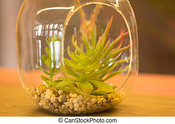 plants in a glass vase the interior of a cafe