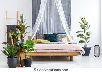 Plants in cozy bedroom interior