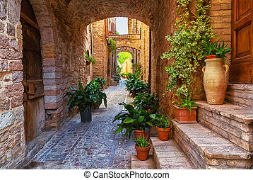 Plants in pots on narrow streets of the ancient city of...