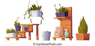 Plants in pots on wooden stand for greenhouse - Green plants...