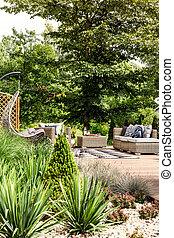 Plants in sunny backyard